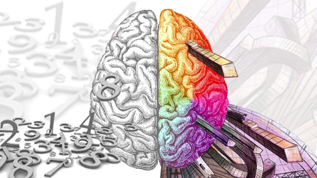 نیم کره مغز